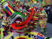 4 elementos imperdibles de los desfiles del Carnaval vegano