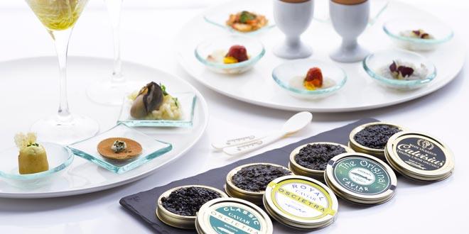 caviar-calvisius-variedad