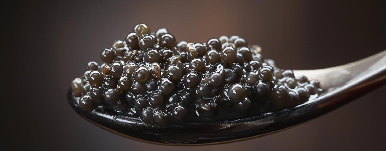 el-caviar-oro-negro-de-italia