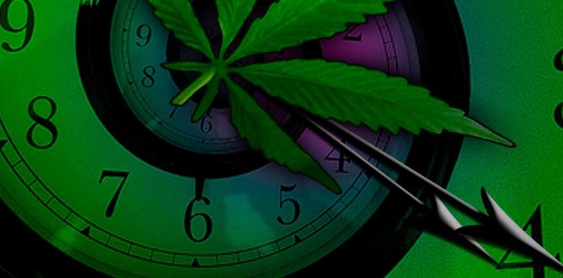 El 420, en medio de la controversial legalización de la marihuana