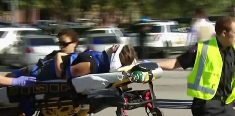 Al menos 15 muertos tras catastrófico tiroteo en California
